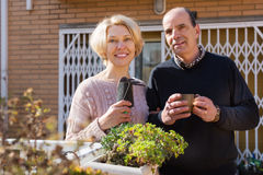 Elderly cuople talking at balcon. Elderly positive female talking with male neighbor at balcon stock image