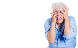 elderly, desperate, mad, looking crazy, desperate man, going insane Royalty Free Stock Photos