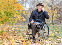 Elderly disabled man in a wheelchair in a park Stock Photography