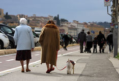 Elderly with dog and families with children Royalty Free Stock Photo
