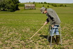 Elderly farmer in walker Royalty Free Stock Photography