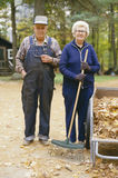 Elderly farming Stock Image