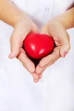 Elderly female doctor or nurse holding red toy heart.  stock photo