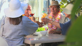 Elderly friends having an aperitif Royalty Free Stock Photo