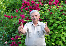 An elderly gardener Royalty Free Stock Photo