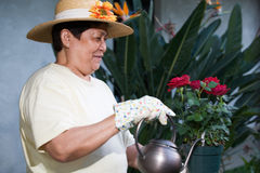 Elderly gardener Royalty Free Stock Photography