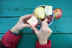 The elderly gardener woman cleans the skins from apples to eat. Fruits . Green wwoden table as background royalty free stock photo