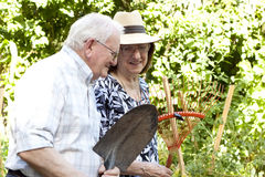 Elderly gardeners stock photography