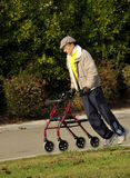 Elderly Gentleman Exercising in Park. Elderly Gentleman with Parkinson's Disease Exercising in Park with a Walker Stock Photo