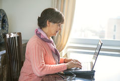 Elderly good looking woman working on laptop. Portrait in domestic interior Stock Photos