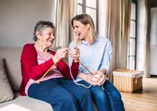 Elderly grandmother and adult granddaughter at home, knitting. An elderly grandmother and adult granddaughter at home, having fun knitting Stock Photos