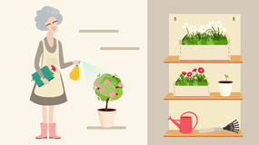 Elderly grandmother tending to her plants Royalty Free Stock Photography