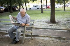 An elderly gray-haired man carefully reads a newspaper while sitting on a bench in the park stock photos