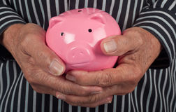 Elderly hand holding piggy bank Royalty Free Stock Photos