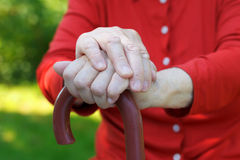 Elderly hands Stock Photography