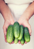 Elderly hands holding fresh cucumber with vintage style. Elderly hands holding organic fresh cucumber with vintage style stock photos