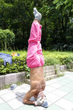 The elderly handstand Royalty Free Stock Photography