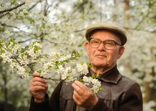elderly happy man Στοκ εικόνες με δικαίωμα ελεύθερης χρήσης