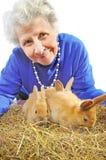 Elderly happy woman with rabbits Stock Photos