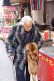 Elderly holding a fox. Elderly people holding a fox in winter, amoy city, china Royalty Free Stock Photography