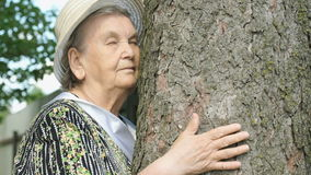 Elderly hugging tree trunk her hands in the forest stock video footage