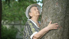 Elderly hugging tree trunk her hands in the forest stock footage