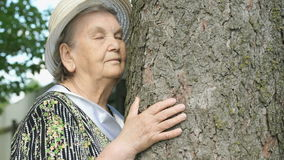 Elderly hugging tree trunk her hands in the forest. Elderly mature woman aged 80s dressed in white hat hugging tree trunk her hands in the forest. Woman is stock footage