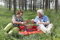 Elderly husband and wife had a picnic in the woods Stock Photography