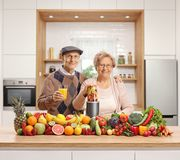 Elderly husband and wife with a pile of fruits and vegetables and a blender. In a kitchen royalty free stock images