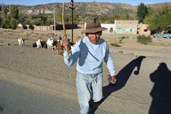 Elderly Indian goatherd crossing asphalted road Stock Photos
