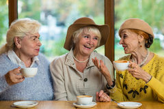 Elderly ladies in cafe smiling. Conversation of old women. Rumors and gossips Stock Photography
