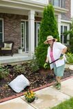 Elderly lady preparing a flowerbed for planting Stock Photo