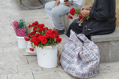 Elderly lady sells white roses to tourists on walking street Royalty Free Stock Photography