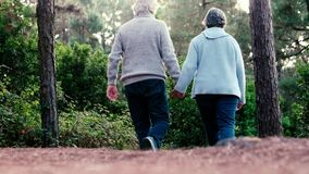 Elderly lifestyle people with couple of caucasian active senior kissing in relationship with green plants nature in background - r. Elderly lifestyle people with stock video