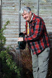 Elderly male gardener watering garden. Royalty Free Stock Photos