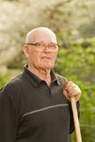 Elderly man Royalty Free Stock Image
