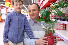Elderly man with boy in shop with plant. In pot royalty free stock photo
