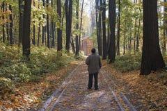 Elderly man in a city park, stands back, season is autumn. Elderly man with a cane in a city park, stands back, season is autumn royalty free stock photo