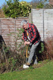 Elderly man digging garden. Royalty Free Stock Photography