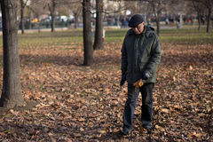 Elderly man with dried leaves in hand. Grandfather walks through autumn leaves Stock Photos
