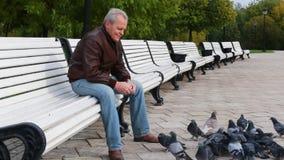 Elderly man feeding ducks in a park stock footage