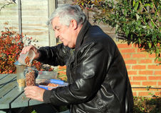 Elderly man filling bird feeders with nuts. Stock Photography
