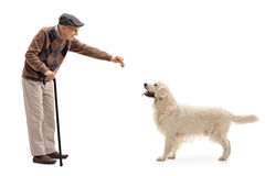 Elderly man giving a cookie to a dog Royalty Free Stock Photos