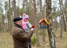The elderly man with the granddaughter. The elderly men with the granddaughter put grains in a birds feeder.Family Royalty Free Stock Photo