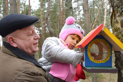 The elderly man with the granddaughter put grains in a birds fee. The elderly men with the granddaughter put grains in a birds feeder. Family Royalty Free Stock Photography