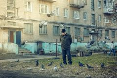 An elderly man grandfather feeds pigeons. royalty free stock images