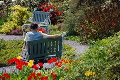 Elderly man is having a break. In the park stock image