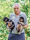 An elderly man keep two puppys on his hands. Manifestation of love for animals_ stock photo
