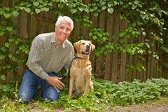 Elderly man with labrador retriever in garden stock images