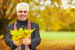 Elderly man with maple leaves Royalty Free Stock Photography
